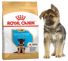 Royal Canin German Shepherd Junior 12 кг - Корм для щенков Немецкой овчарки до 15 мес.