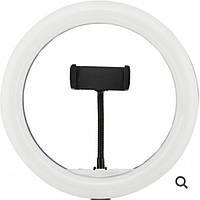 Кольцевая LED RGB лампа диаметром MJ33 30 см с пультом Black (7618) #S/O