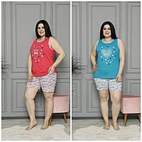 Пижама женская с шортами батал Akasya, фото 1