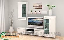 """Модульная мебель для гостиной """"МГ-3"""" Компанит"""
