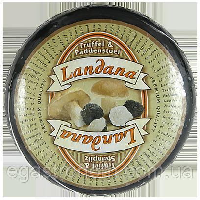 Сір Ландана трюффель із біл. грибом Landana truffel steinpilz 4kg 1шт/ящ (Код : 00-00003843)