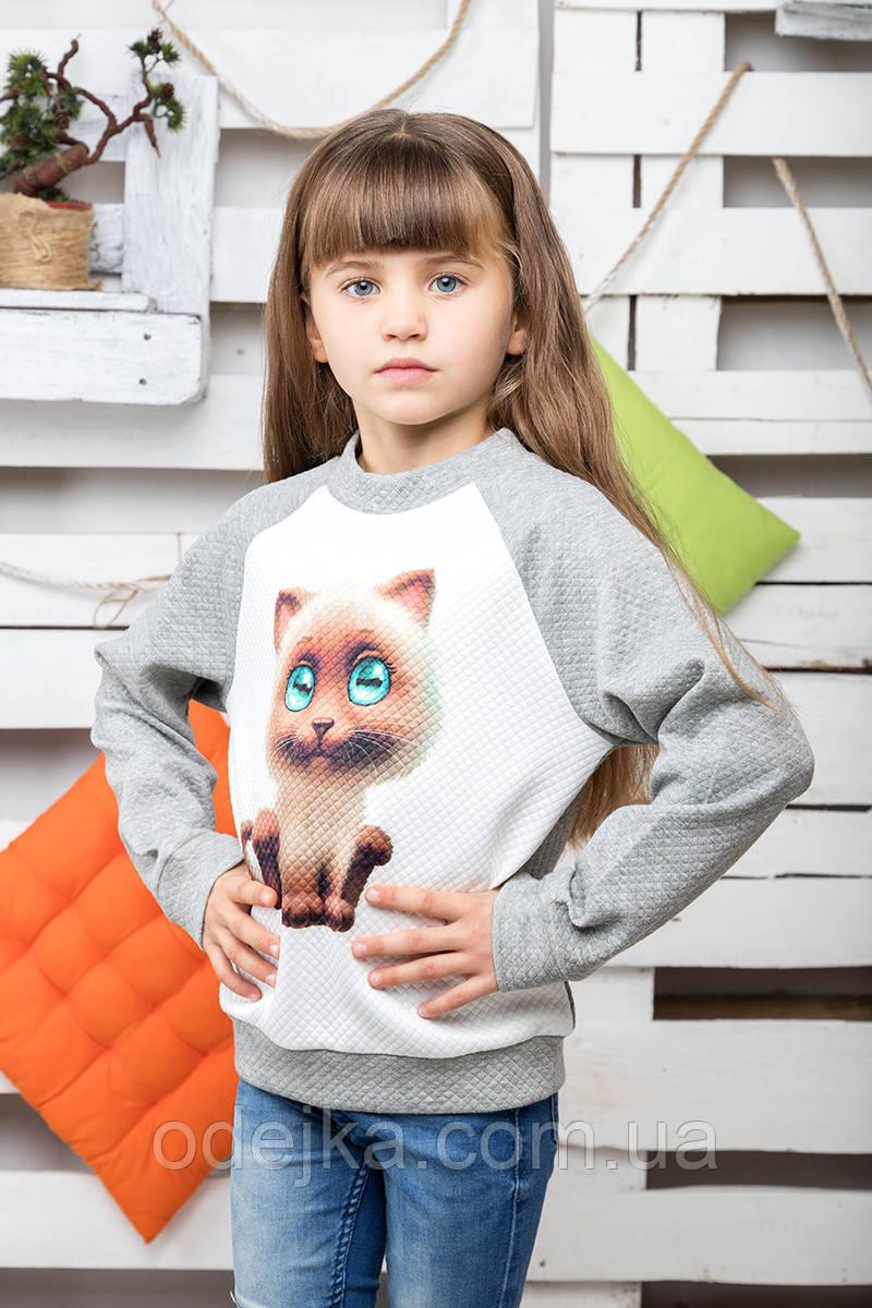 Світшот Кішка меланж