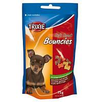 Косточки для малых пород и щенков Trixie Bouncies (ягнёнок птица желудок) 75 гр
