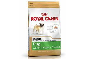 Royal Canin Pug Junior 1.5 кг - сухой корм для щенков породы мопс до 10 месяцев