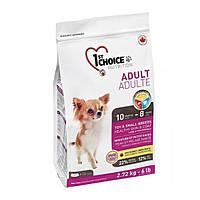 1st Choice Toy & Small Adult Lamb & Fish 2.72 кг корм для собак малих і міні порід з ягням і рибою