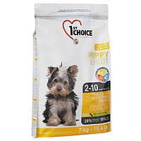 1st Choice Toy & Small Puppy Chicken 7 кг ФЕСТ ЧОЙС сухий корм для цуценят міні та малих порід з куркою