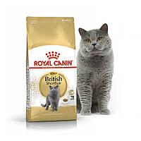 Royal Canin British Shorthair 10 кг - корм для Британців короткошерстих від 1 року