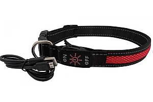 Ошейник LED AnimAll для собак M 2,5/40-50 см, красный