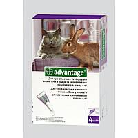 Капли на холку для кошек свыше 4 кг Bayer (Байер) Адвантейдж 80, упаковка 4 пипетки