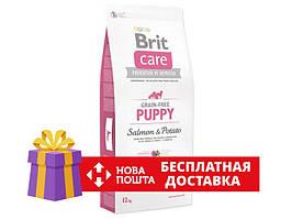 Brit Care Grain Free Puppy Salmon and Potatoes 12 кг - Сухий корм для цуценят з лососем і картоплею