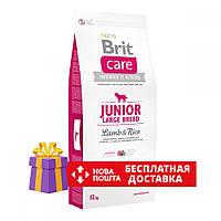 Brit Care Junior Large Breed Lamb and rice 12 кг - Сухий корм для цуценят великих порід з м'ясом ягняти і