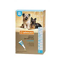 Bayer Advocate для собак вагою від 4 до 10 кг - краплі на холку від бліх і кліщів, упаковка 3 піпетки