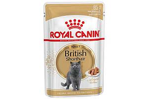 Royal Canin British Shorthair Adul 85 г х 12 - корм для котов породы британская короткошерстная от 12 месяцев