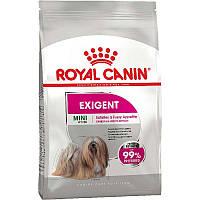 Сухий корм Royal Canin Mini Exigent 1 кг для вибагливих собак дрібних порід старше 10 місяців