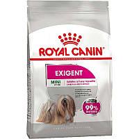 Сухий корм Royal Canin Mini Exigent 3 кг для вибагливих собак дрібних порід старше 10 місяців