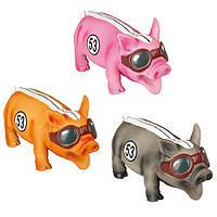 Flamingo (Фламінго) RACEPIG іграшка для собак, гоночний порося реалістично хрюкаючий, латекс