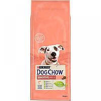 Сухий корм Dog Chow Sensitive 14 кг для дорослих собак з лососем