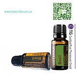 Эфирное масло Базилик BASIL 15 мл, фото 2