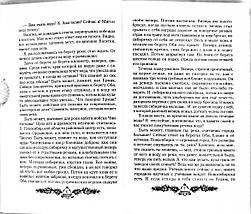 Простір любові (Дзвенячі кедри Росії. Книга 3). Володимир Мегре. Діля, фото 2