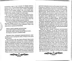 Пространство любви (Звенящие кедры России. Книга 3). Владимир Мегре. Диля, фото 3