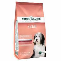 Arden Grange Adult salmon/rice Корм сухой для взрослых собак с лососем и рисом 2 кг