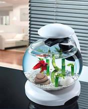 Аквариум для петушка и золотой рыбки Tetra (Тетра) Cascade Globe белый,  6,8 л