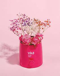 ZOLA Cosmetics
