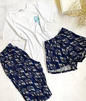 Бавовняна піжама трійка футболка шорти штани S-M