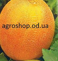 Семена дыни Алушта 0,5кг