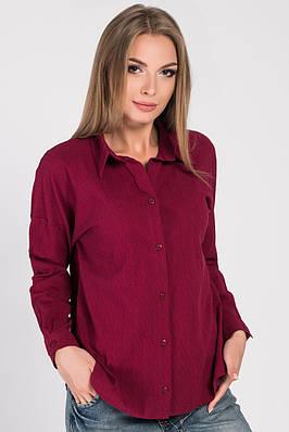 Рубашка Carica BK-7644-16