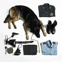 Амуніція для собак