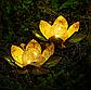 Садовий ліхтар на сонячній батареї Лотос, світлодіодний, водонепроникний, діам. 20см., фото 7