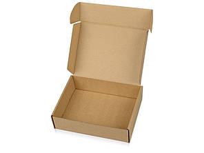 Коробка НП 0,5 кг плоская,  24х17х5 см, аналог Новой Почты, самосборная, гофрокартон Т22-Е
