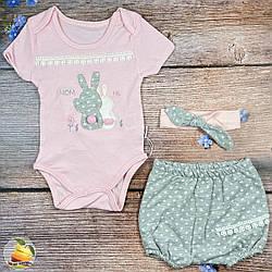 Боді і шорти для дівчинки Розміри: 3,6,9 місяців (02022)