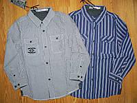 Рубашки на мальчика оптом, Glo-story, 98-128 рр