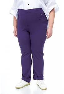 Брюки,капри,лосины,бриджы,джинсы,легинсы больших размеров от 48 до 82