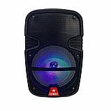 Аудіо система портативна бездротова bluetooth колонка HS-008BT, фото 7