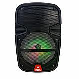 Аудіо система портативна бездротова bluetooth колонка HS-008BT, фото 9
