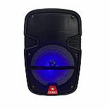 Аудіо система портативна бездротова bluetooth колонка HS-008BT, фото 2