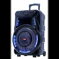 Колонка аккумуляторная Sky Sound-7474 15 дюймов с микрофоном 180W (USB/FM/Bluetooth/TWS), фото 1