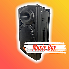 Bluetooth колонка портативная с двумя микрофонами + подключение флешки 1000 W BT120D 212D