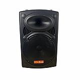 Bluetooth колонка портативная с двумя микрофонами + подключение флешки 1000 W BT120D 212D, фото 3