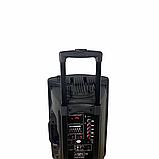 Bluetooth колонка портативная с двумя микрофонами + подключение флешки 1000 W BT120D 212D, фото 5