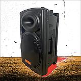 Bluetooth колонка портативная с двумя микрофонами + подключение флешки 1000 W BT120D 212D, фото 7