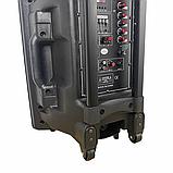 Bluetooth колонка портативная с двумя микрофонами + подключение флешки 1000 W BT120D 212D, фото 8