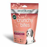 Arden Grange Crunchy bites with fresh salmon Хрустящее лакомство   для собак с  лососем 0.225 г.
