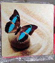 Підлогові ваги MATARIX яскраві кольори, фото 3