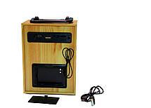 Портативная Bluetooth колонка, радио, фото 2