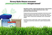Рідкий газон Hydro Mousse Розпилювач для гідропосіву газону Гідро мус, фото 2