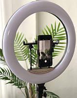 Кольцевая лампа Elexy 46